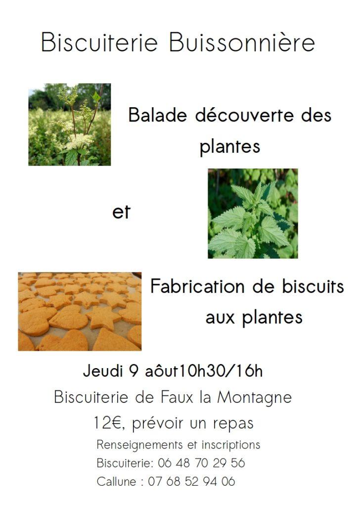 biscuiterie buissonière à la biscuiterie du plateau